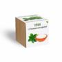 Kép 1/4 - Stevia növényem fa kockában